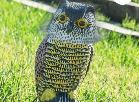 Originálnu atmosféru u vás vytvorí sova s otáčacou hlavou na záhradu Oh My  Home! f9d04a598d5