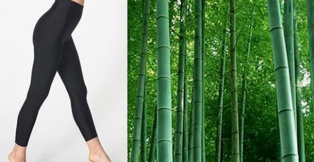 Dámske bambusové termo legíny. Nielen že budete vyzerať perfektne a štýlovo, ale dodajú vám aj príjemný pocit nosenia.