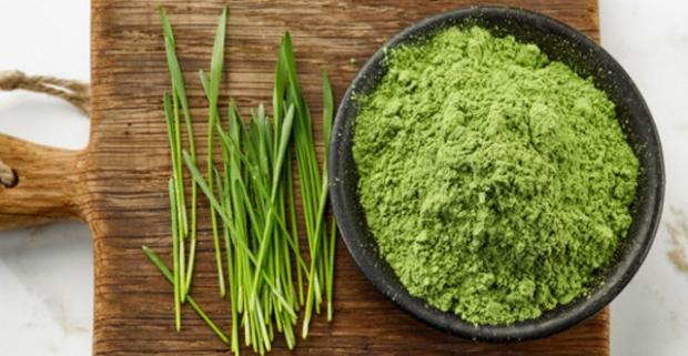 Doprajte si zdravú pochúťku. Zelený jačmeň v prášku plný vitamínov, potrebných živín a antioxidantov pre doplnenie energie a šejker zdarma.