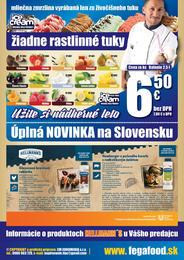 16. stránka Fega Food letáku